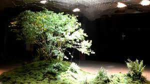 bajo tierra1
